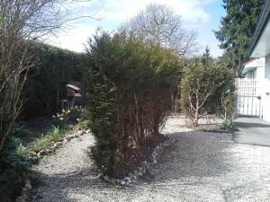 Village-Foret-jardin